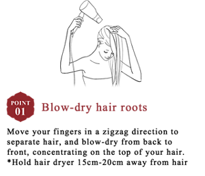 Blow-dry hair roots