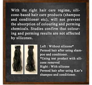 With the right hair care regime, silicone-based hair care products (shampoo and conditioner etc), will not prevent the absorption of colouring and perming chemicals. Studies confirm that colouring and perming results are not affected by silicones.