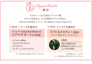point1 Ingredients 成分