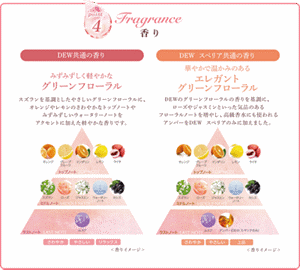 point4 Fragrance 香り