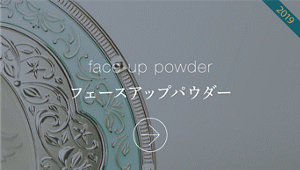 face-up powder フェースアップパウダー