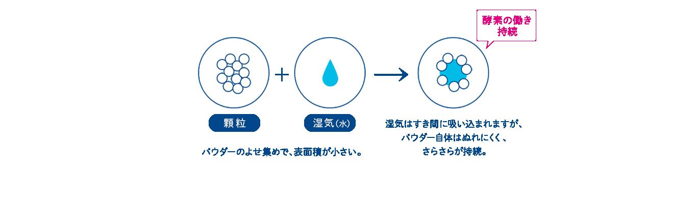 酵素の働き概念図