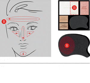 STEP2 Apply Shade B to parts of the center of the face.