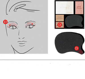 STEP4 Using the smallest area of the sponge, apply shade D to the eyelid.