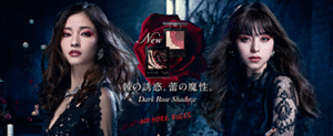 NEW 棘の誘惑。蕾の魔性。 Dark Rose Shadow NO MORE RULES.