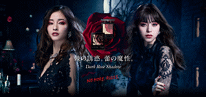 Dark Rose Shadow 棘の誘惑。蕾の魔性。 NO MORE RULES.