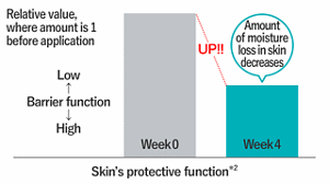 Skin's protective function*2