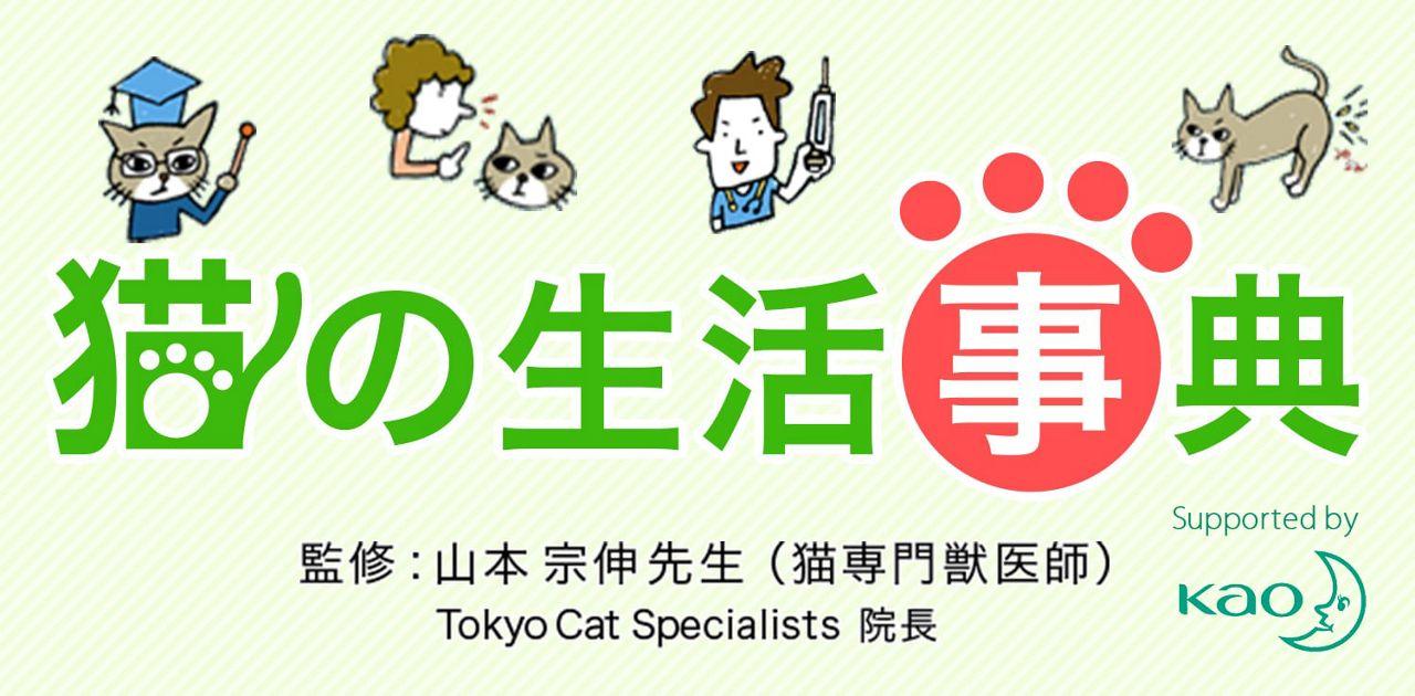 猫のトイレのしつけ猫の生活事典ニャンとも清潔トイレ花王株式会社