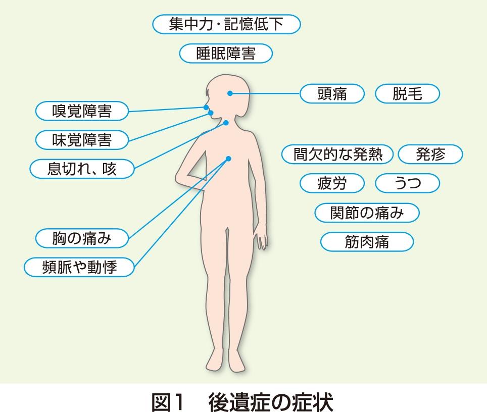 コロナ 症状 関節 痛