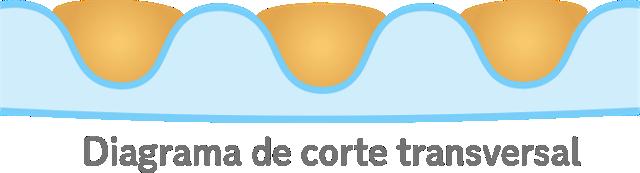 Diagrama de corte transversal